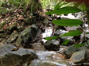 FRIM waterfall 2