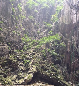 Batu Caves 33