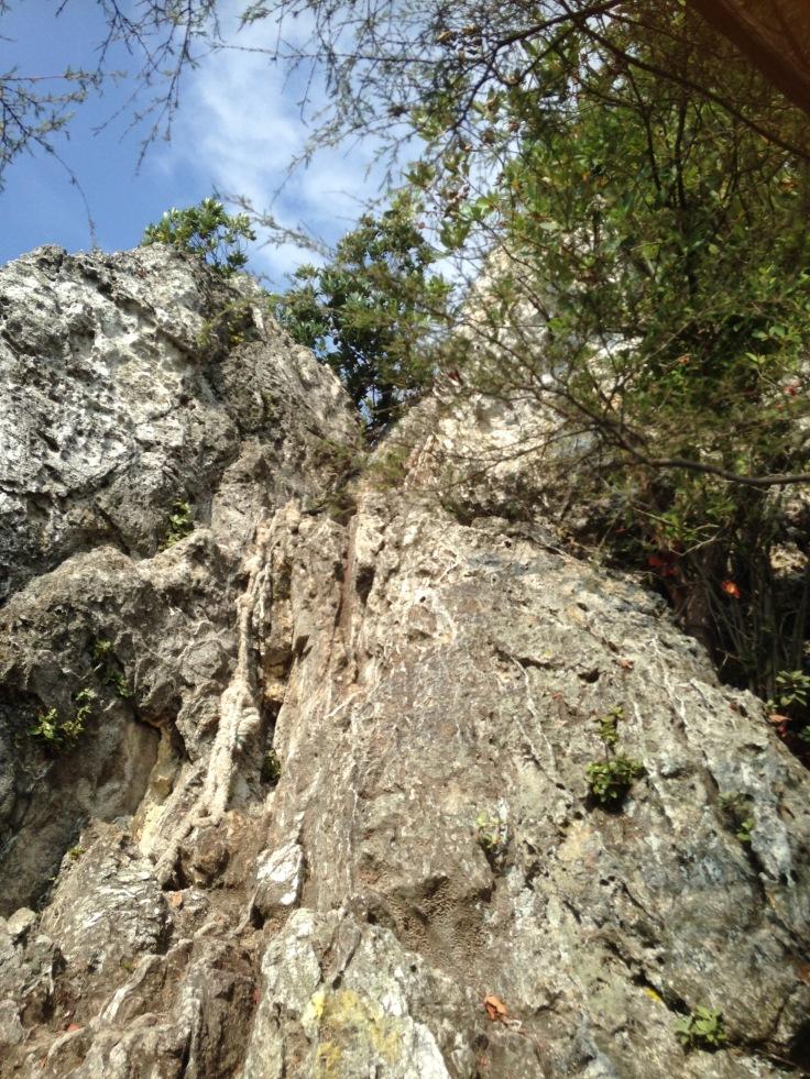 bukit-tabor-3