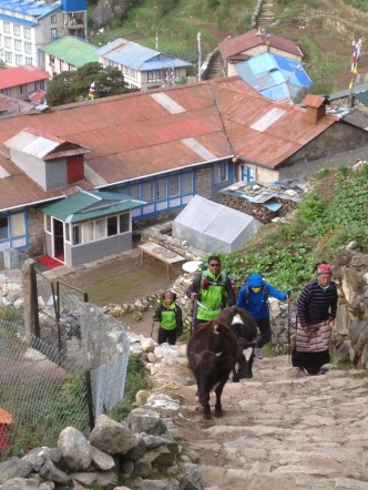 Heading out from Nacmche Bazar