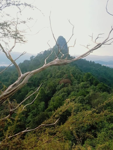 Bukit Tabur Far East