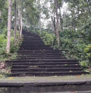Bali temple steps